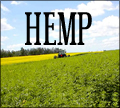 hemp clothing directory hemp clothing